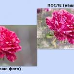 Печать больших фотографий на обоях в Фотообои ТОП, Стерлитамак